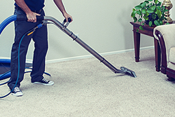 CARPET CLEANING >>