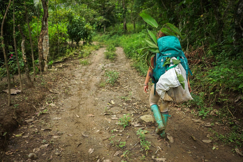 For your first visit, it's custom to enter Kalu Yala by foot. Photo credit: Kalu Yala