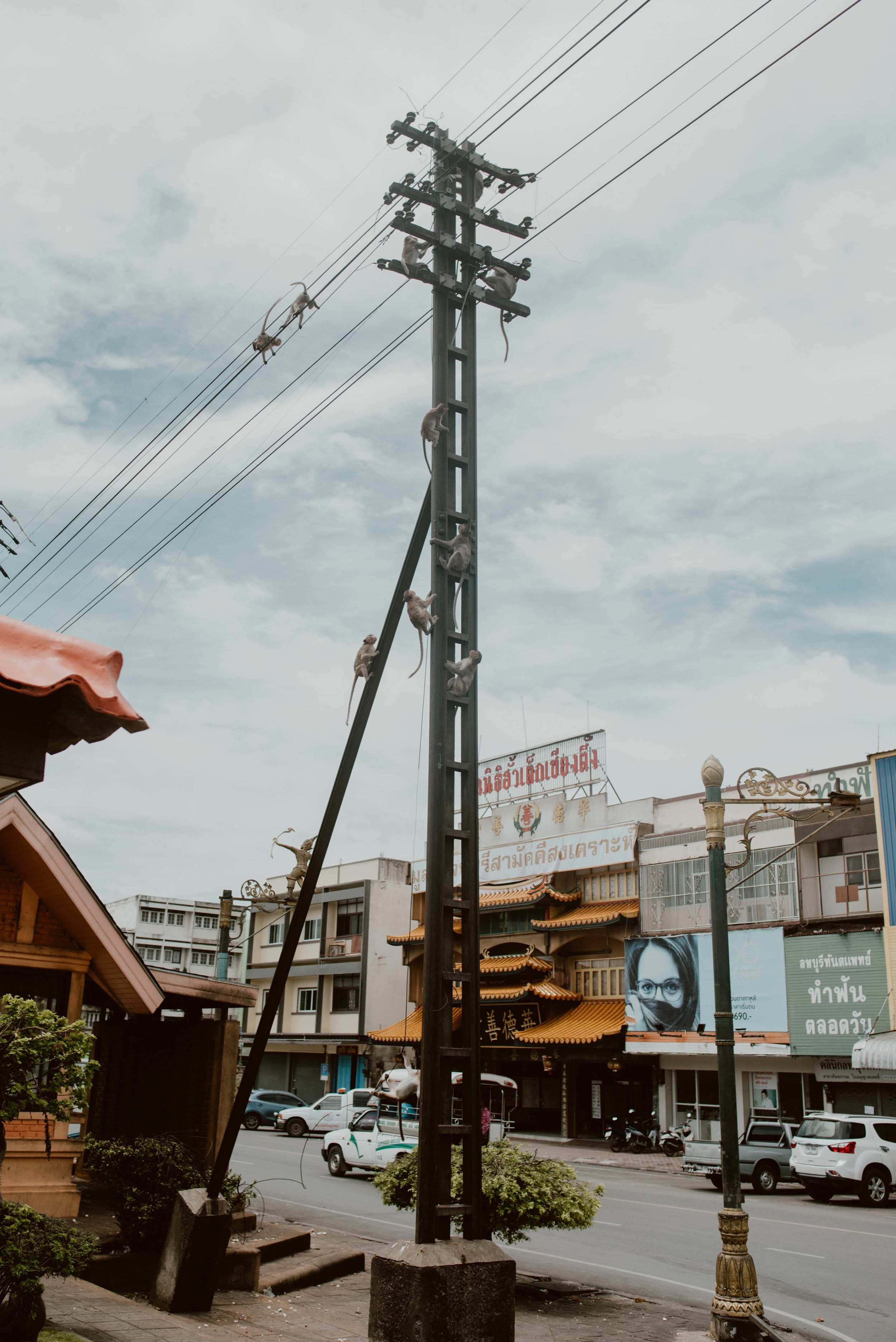 Bangkok-losebano-50.jpg