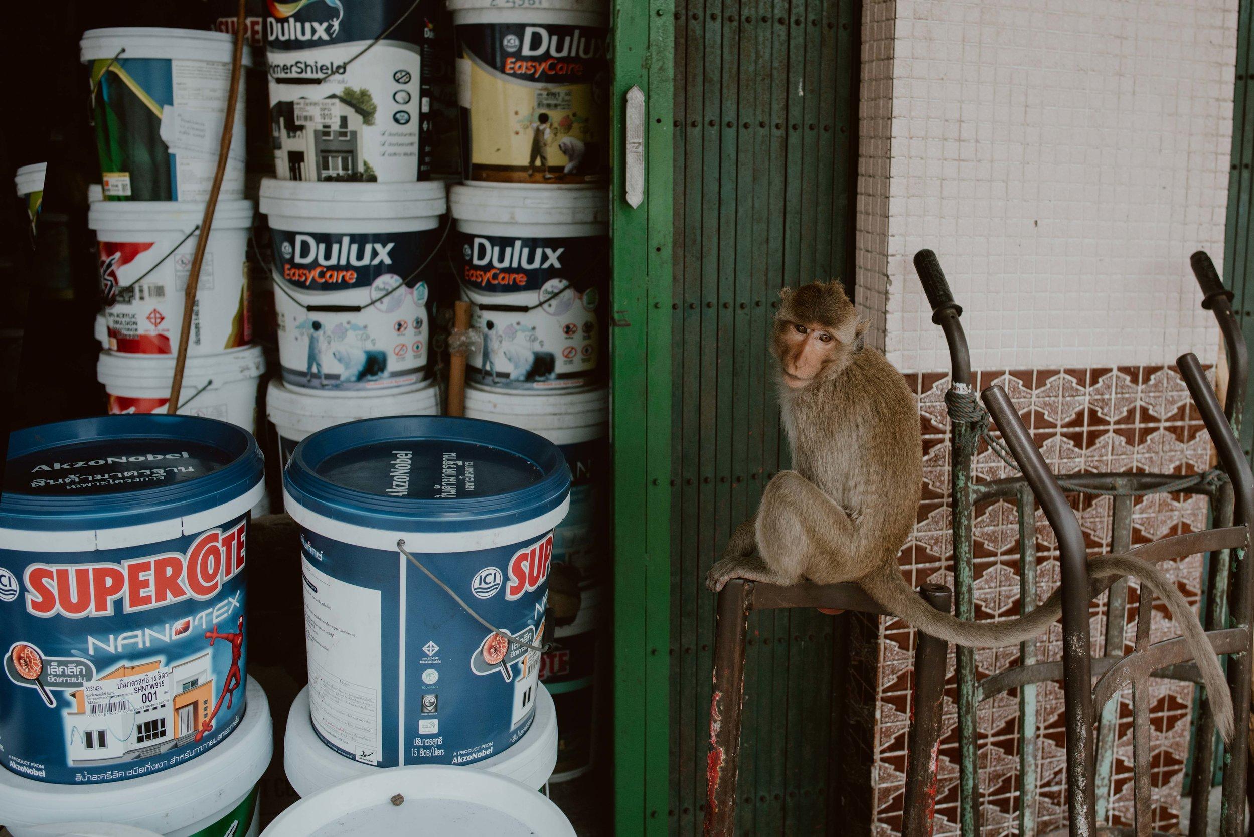 Bangkok-losebano-51.jpg