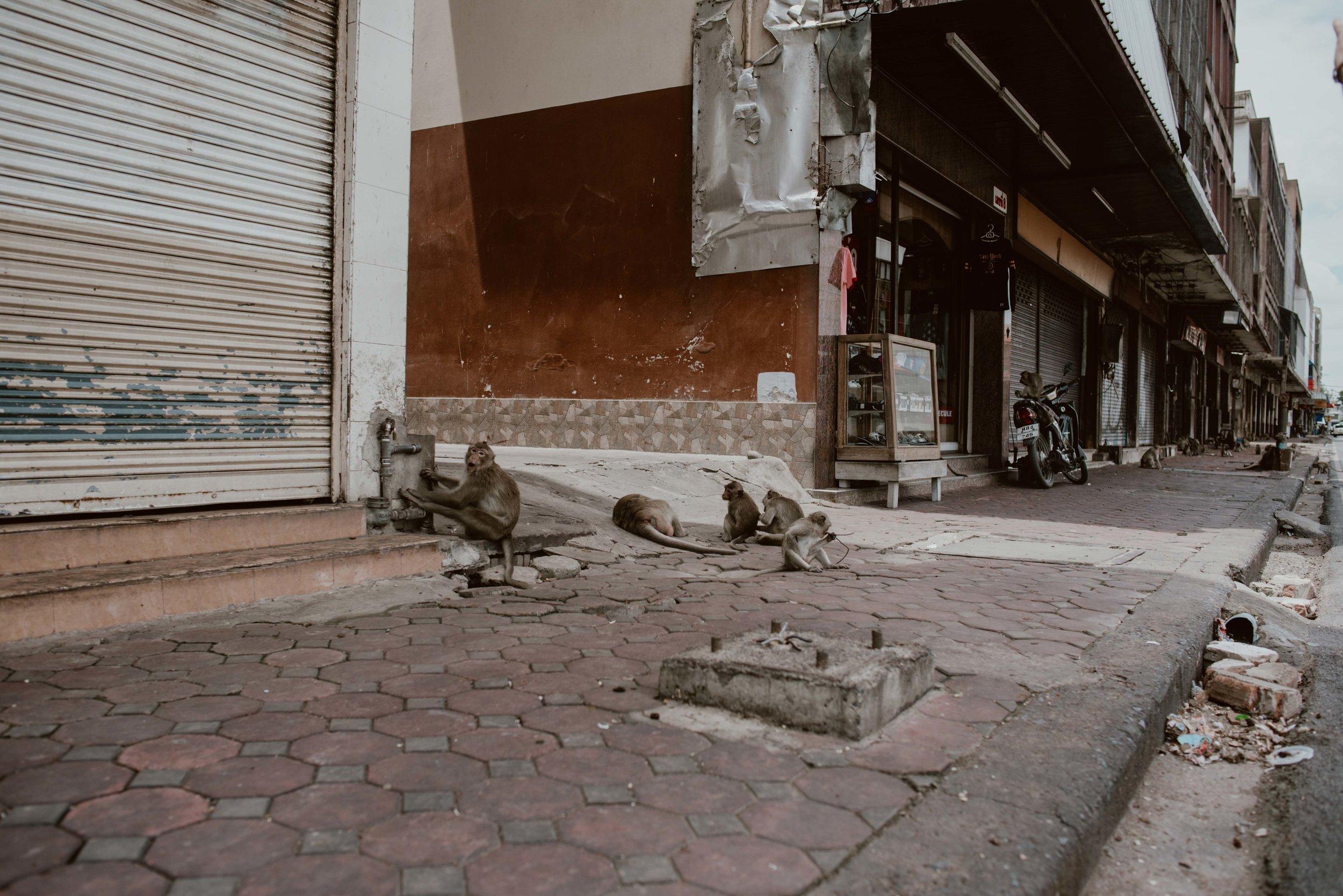 Bangkok-losebano-65.jpg