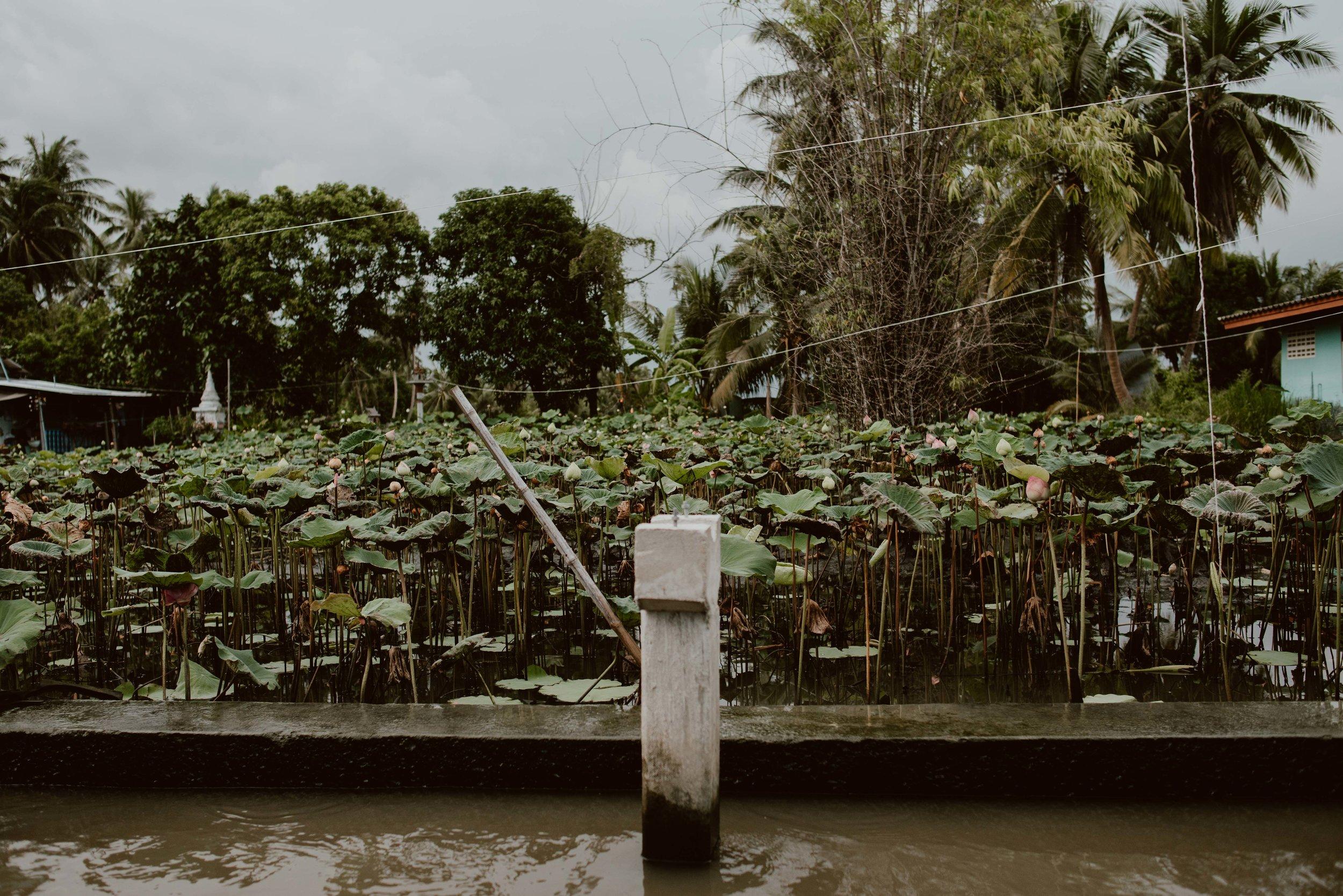Bangkok-losebano-181.jpg