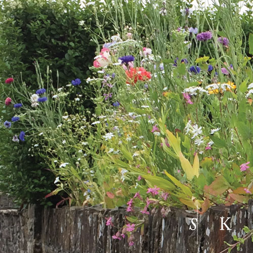 Meadow on a Wall