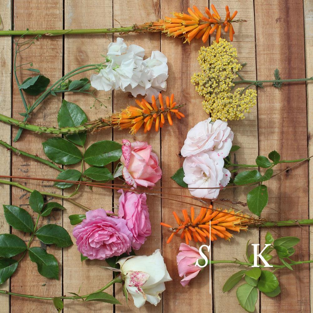 Summer cut flowers