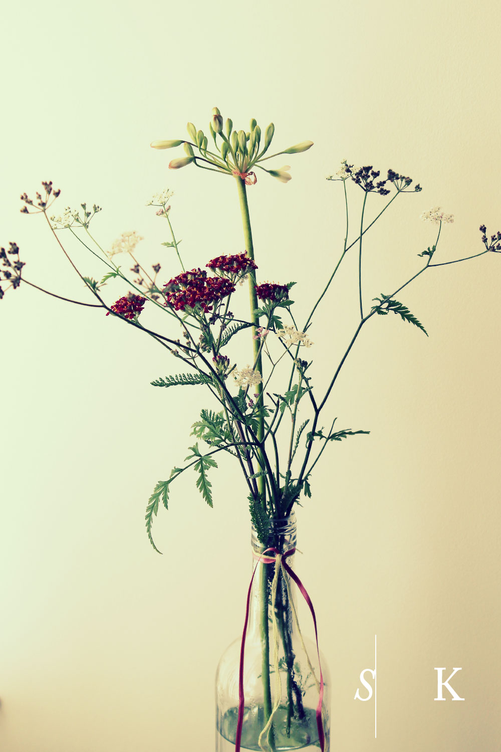 Yarrow and Agapanthus