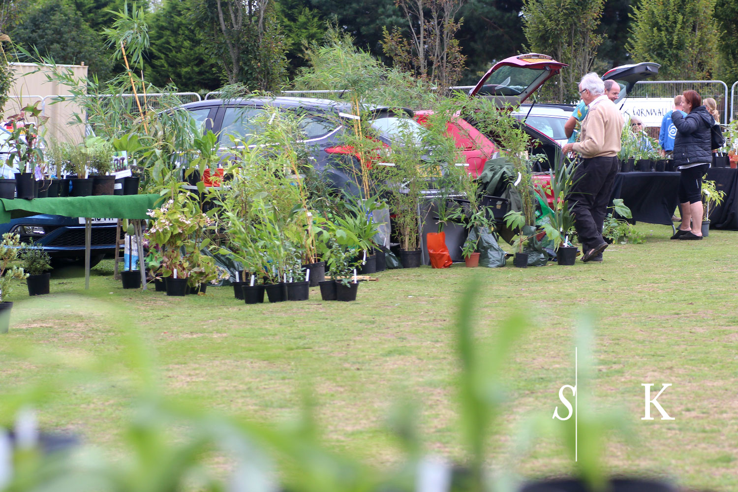 Plant Show in September 2016 Cornwall Penzance
