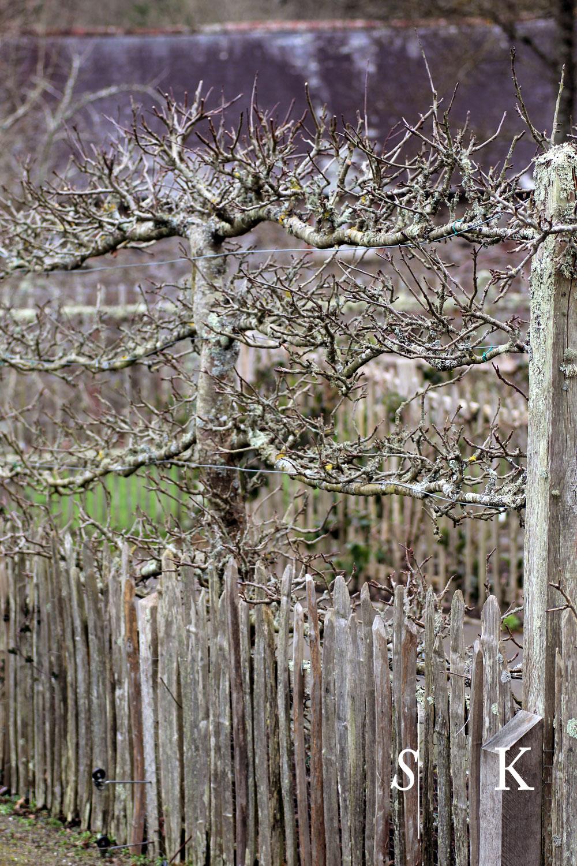 Garden Design Rosemoor