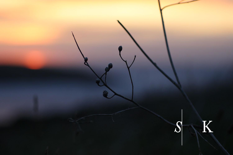 The Cornish Coast as the Sun Sets October Selma Garden Design