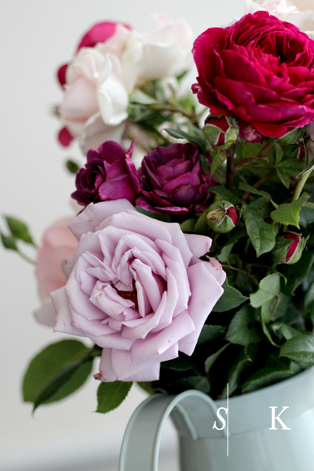 Roses from the garden in Cornwall
