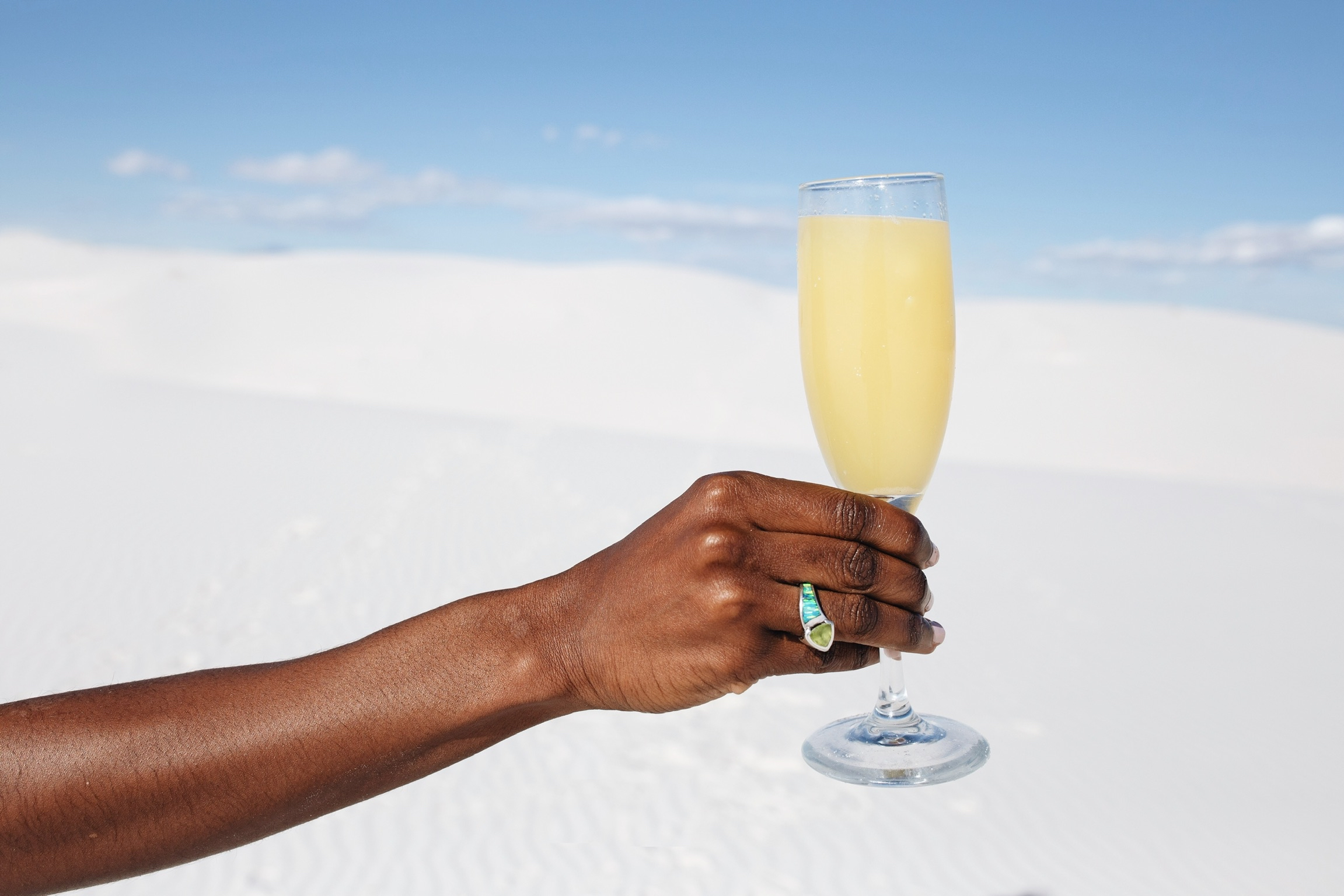 Money & Mimosas at the White Sands, New Mexico