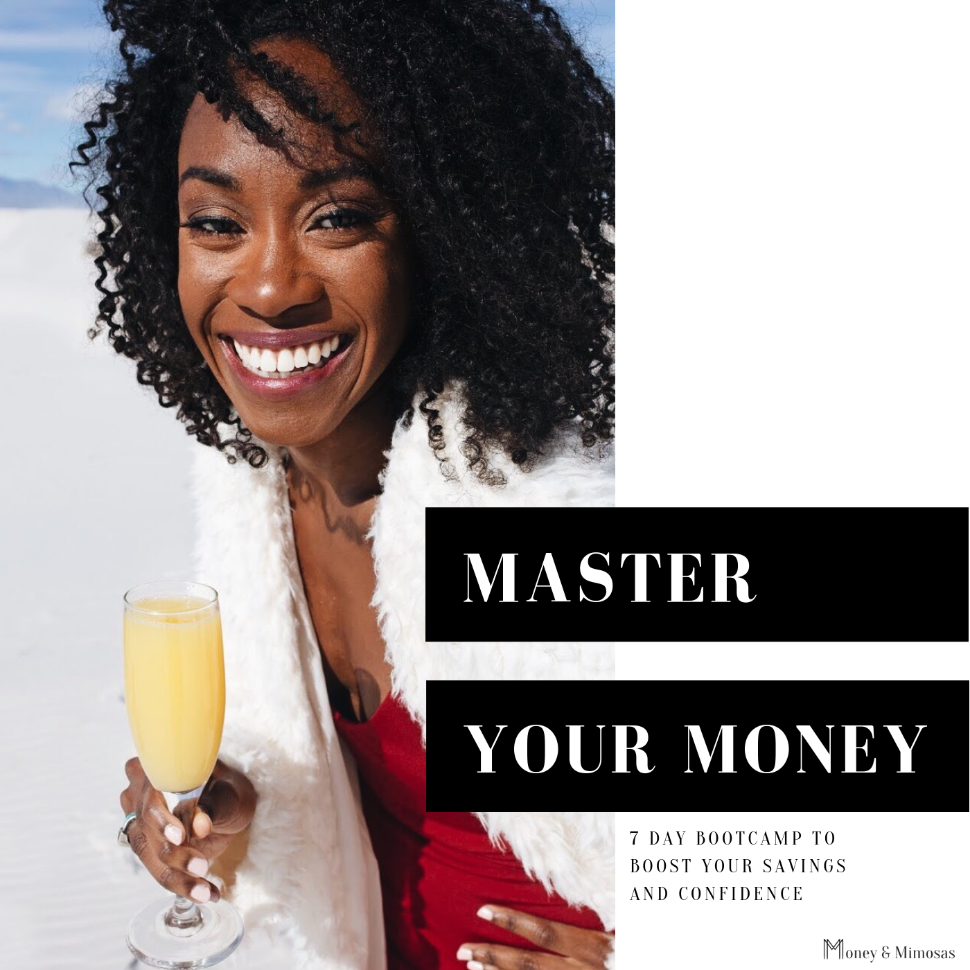 Master Your Money.png