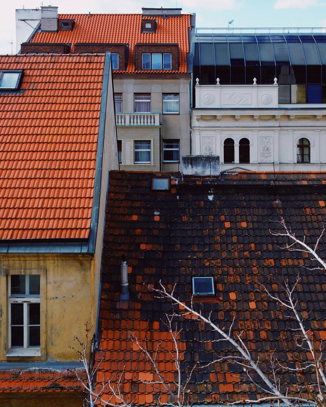 Polina-Shubkina-Prague-Photographer-007.jpeg