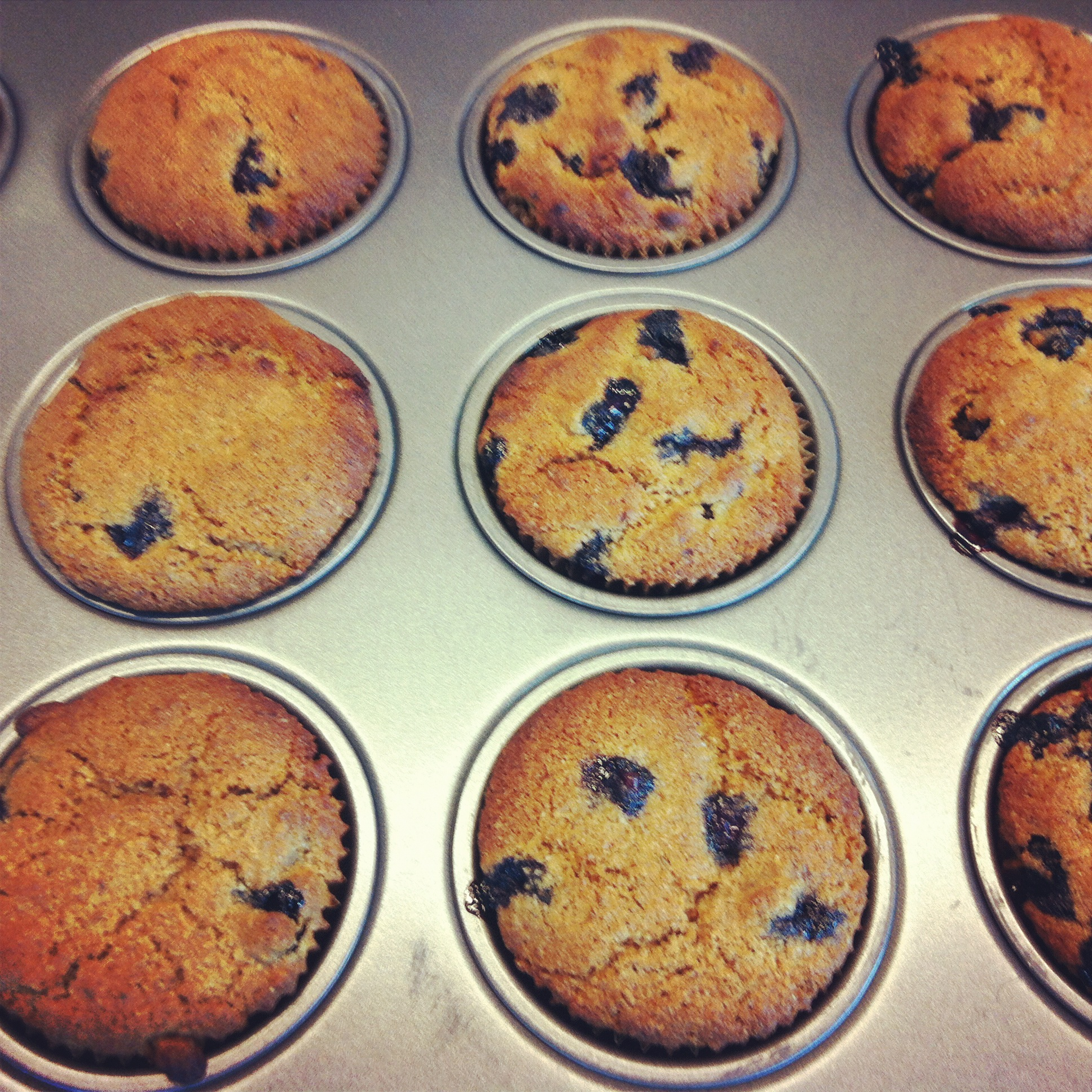 Love Life and Lollipops- Vegan Sprouted Lemon Blueberry Muffins