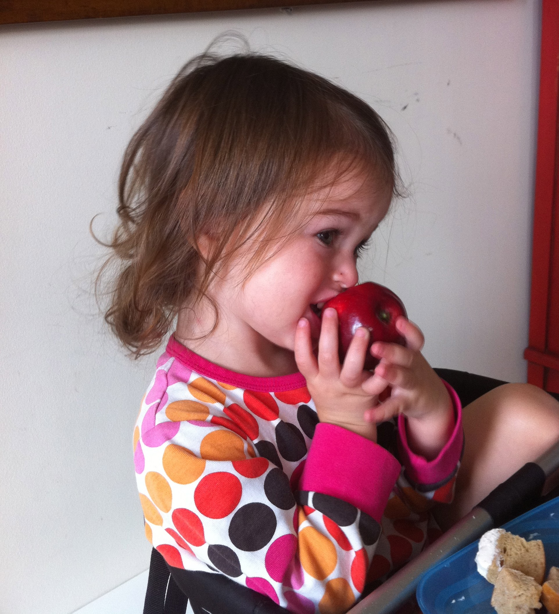 Love Life and Lollipops- Baby Avi eating an apple