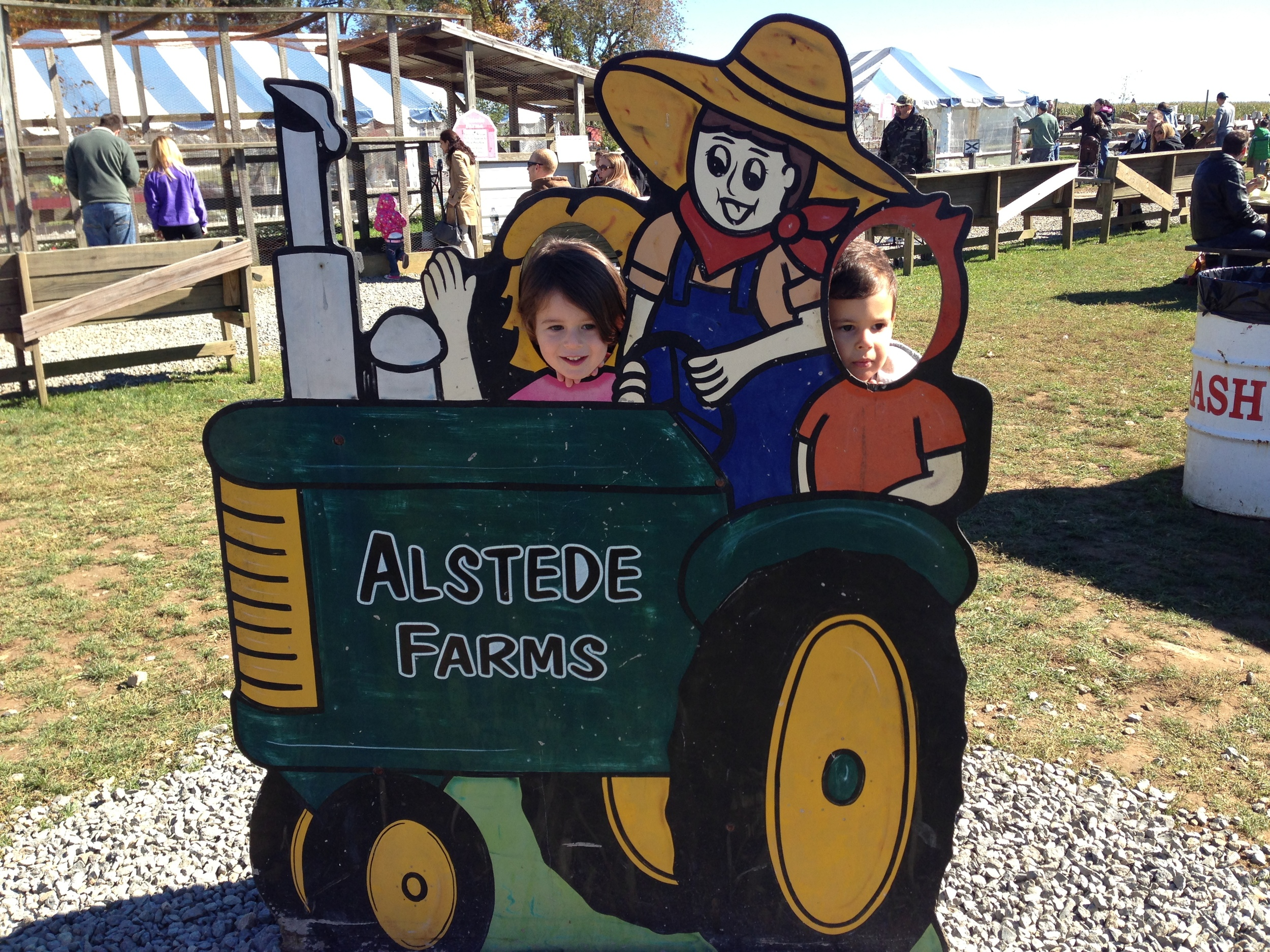 Love Life and Lollipops- Alstede Farm