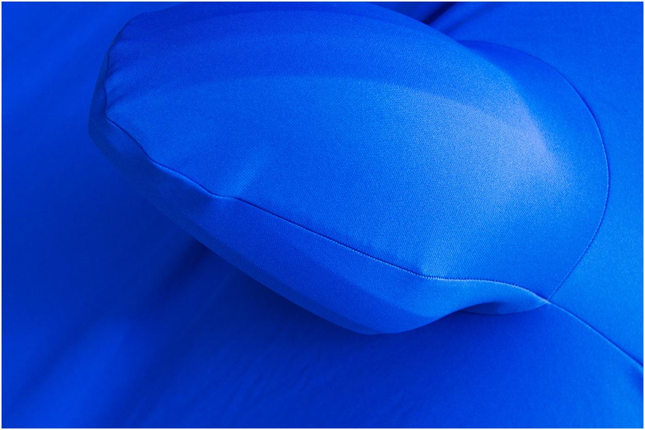 De blauwe  Tiguan