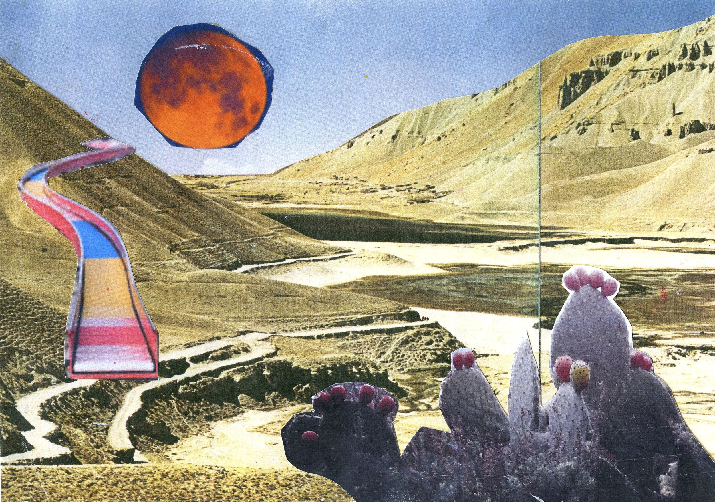 Collage 11