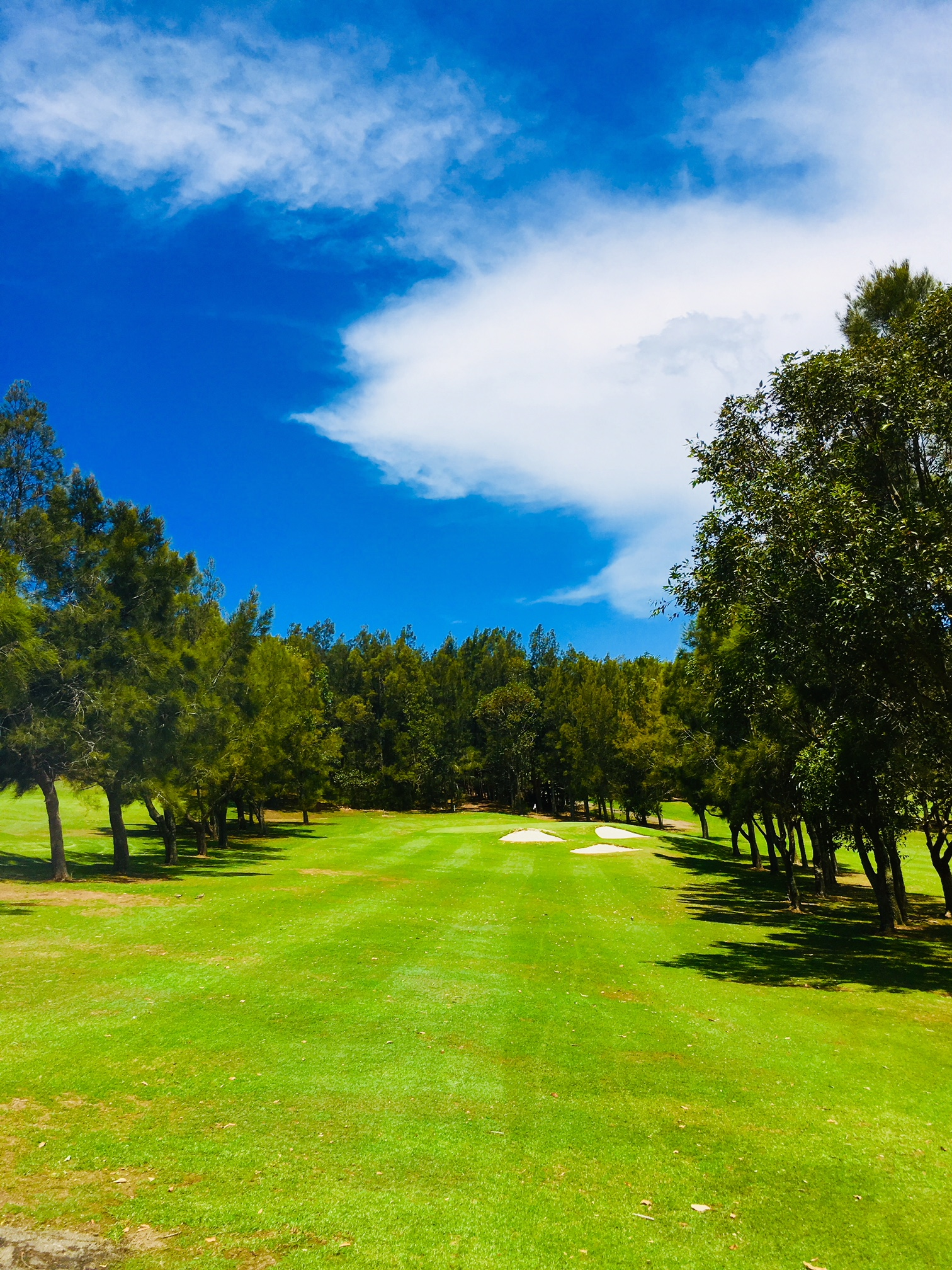 Hole One - PAR 3 -121 metresThe first hole is welcoming par 3 that requires a short to mid iron off the tee. Aim to the left allowing the ball to work down towards the green.