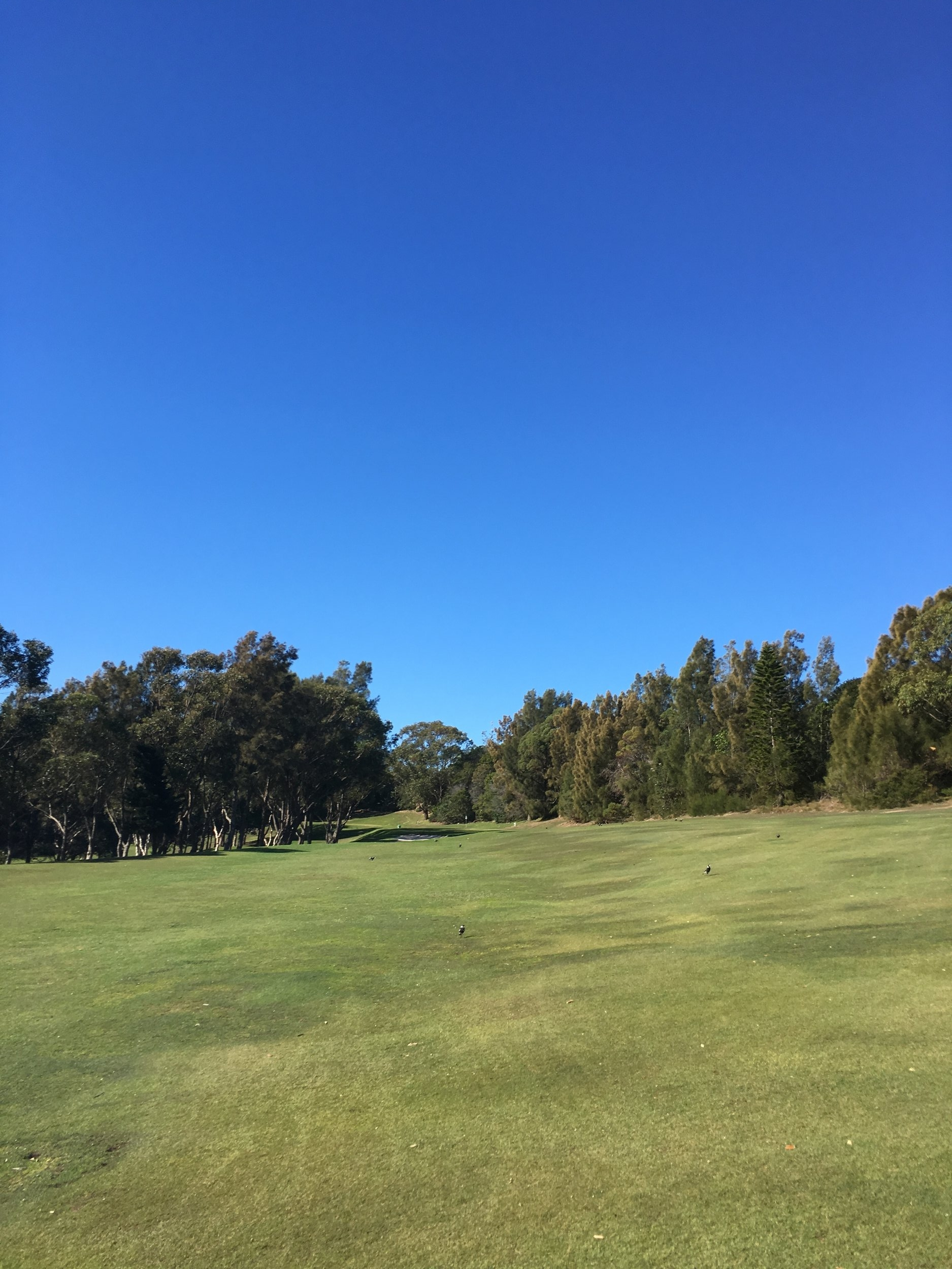 Hole Six - PAR 4 - 242 metresTricky par 4 that tempts the golfer to hit driver but beware any driver shot missing the fairway will pay big penalties. Smart play is an iron off the tee leaving a short iron to the green.