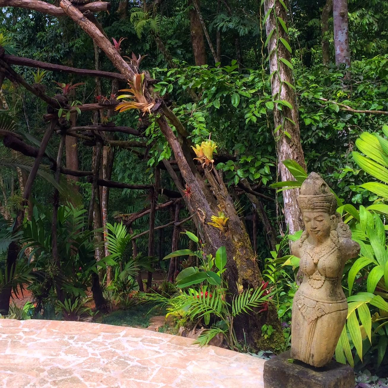 Jardín Botánico  ›