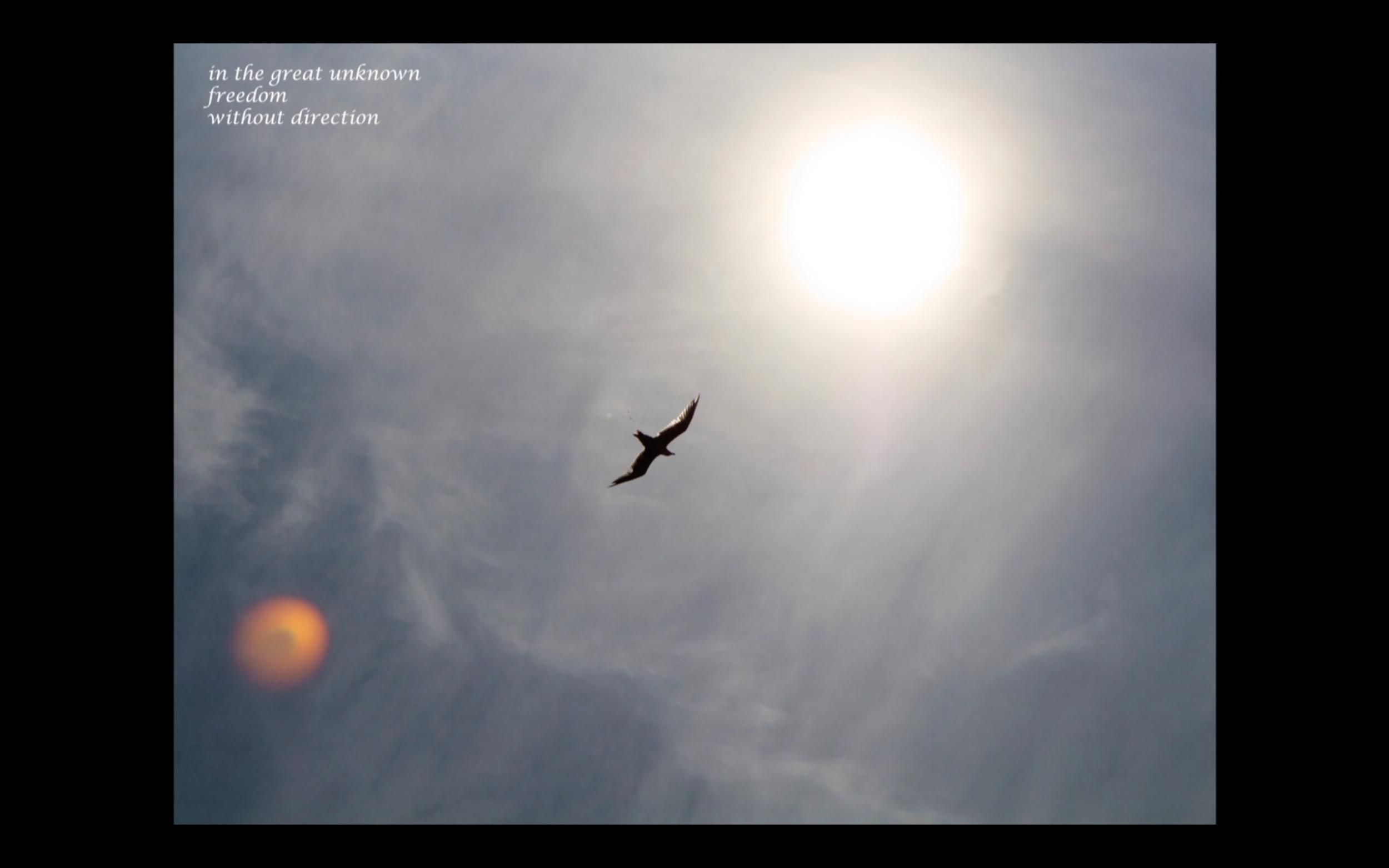 Screen Shot 2015-08-24 at 8.43.30 AM.png