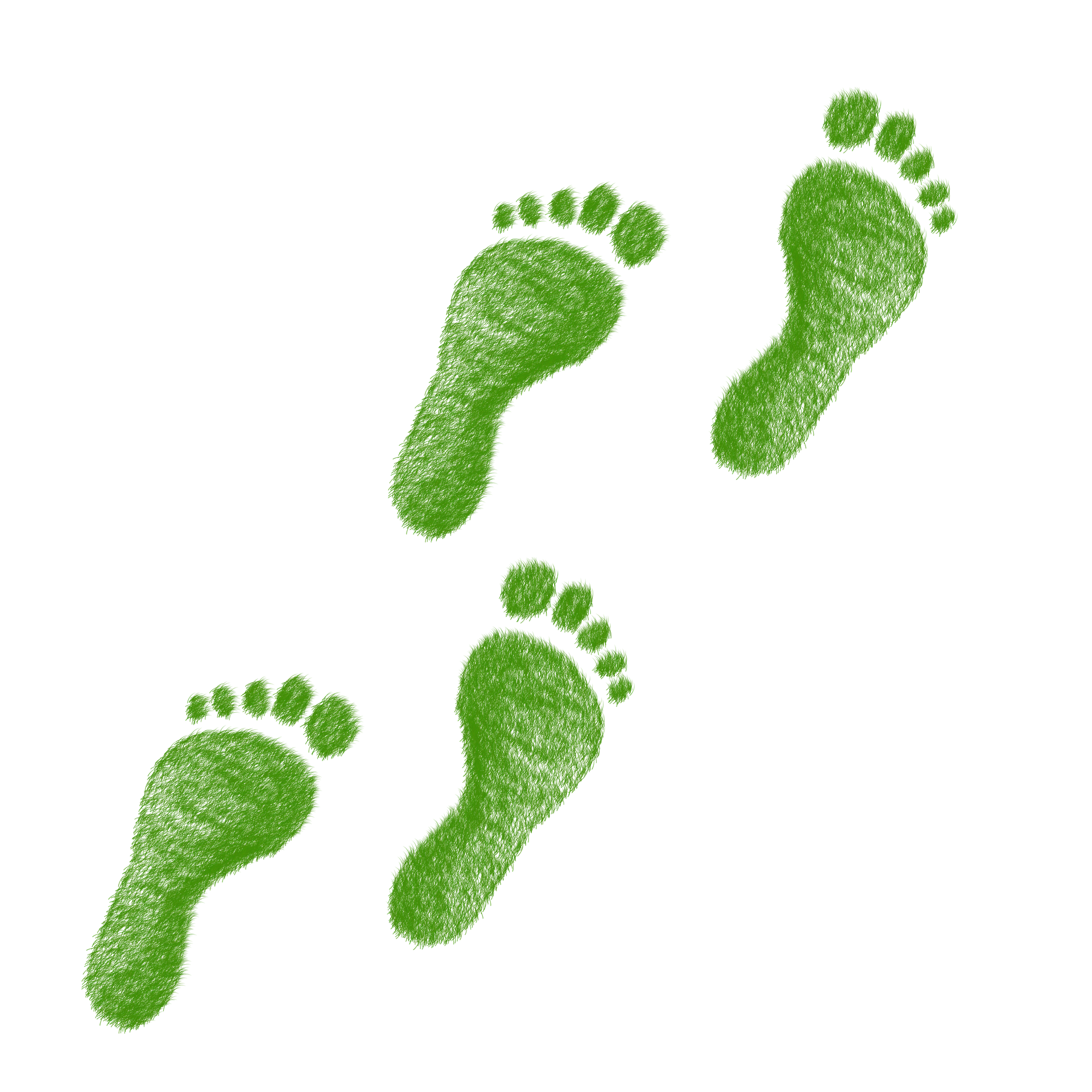green-1968590_1920.png