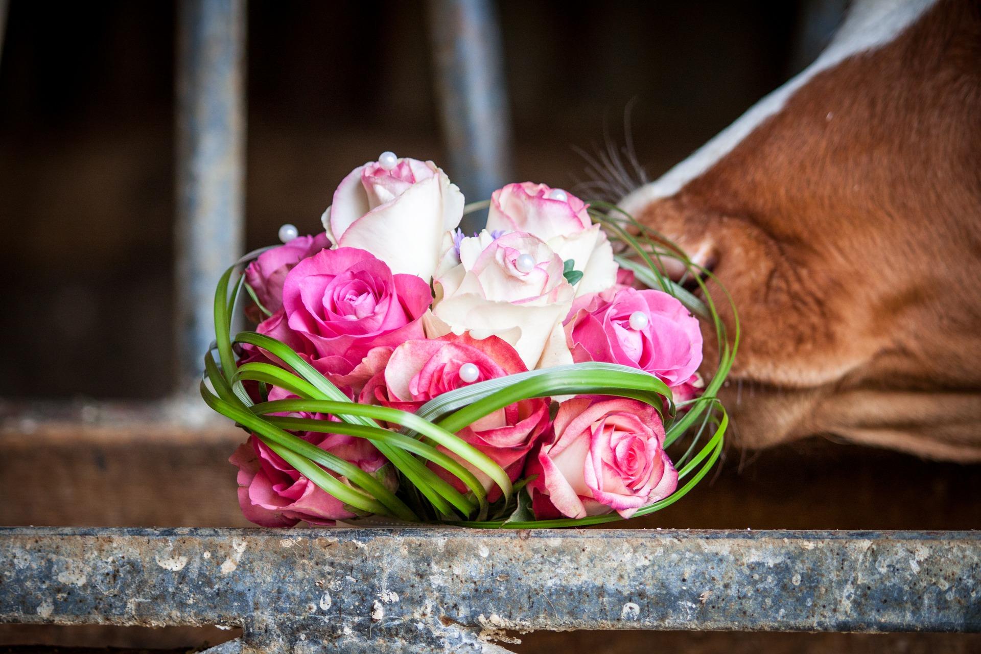 bridal-bouquet-2278395_1920.jpg