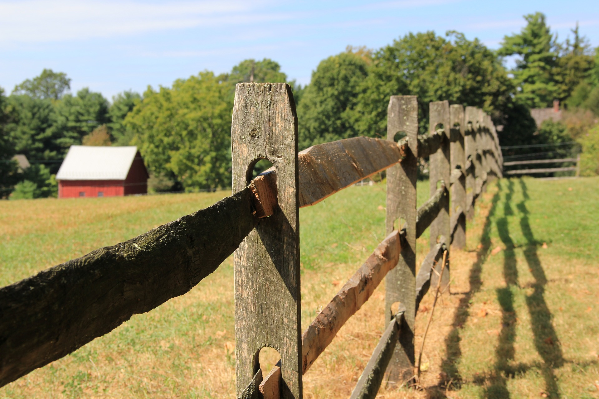 fence-2199026_1920.jpg
