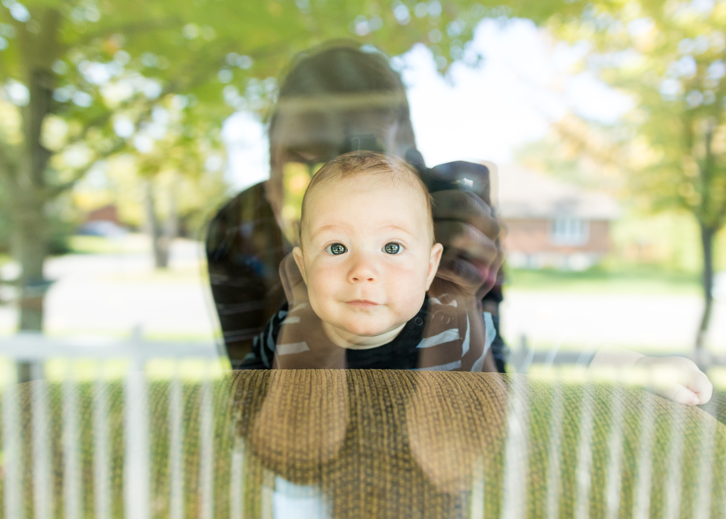 Emmett Likes the Window