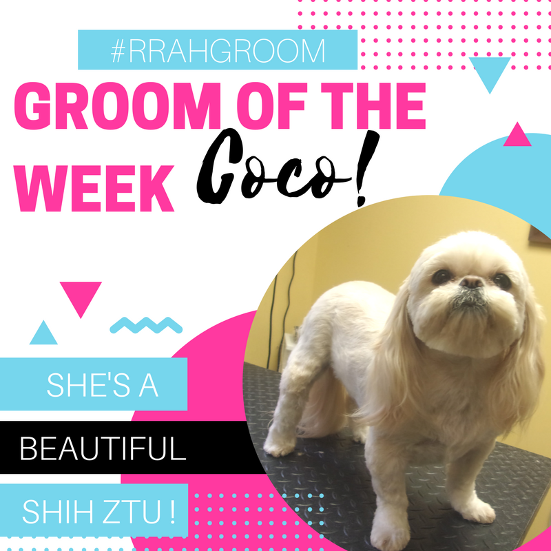 Groom of the week-.png