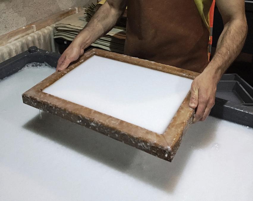 11. Formazione del foglio.jpg