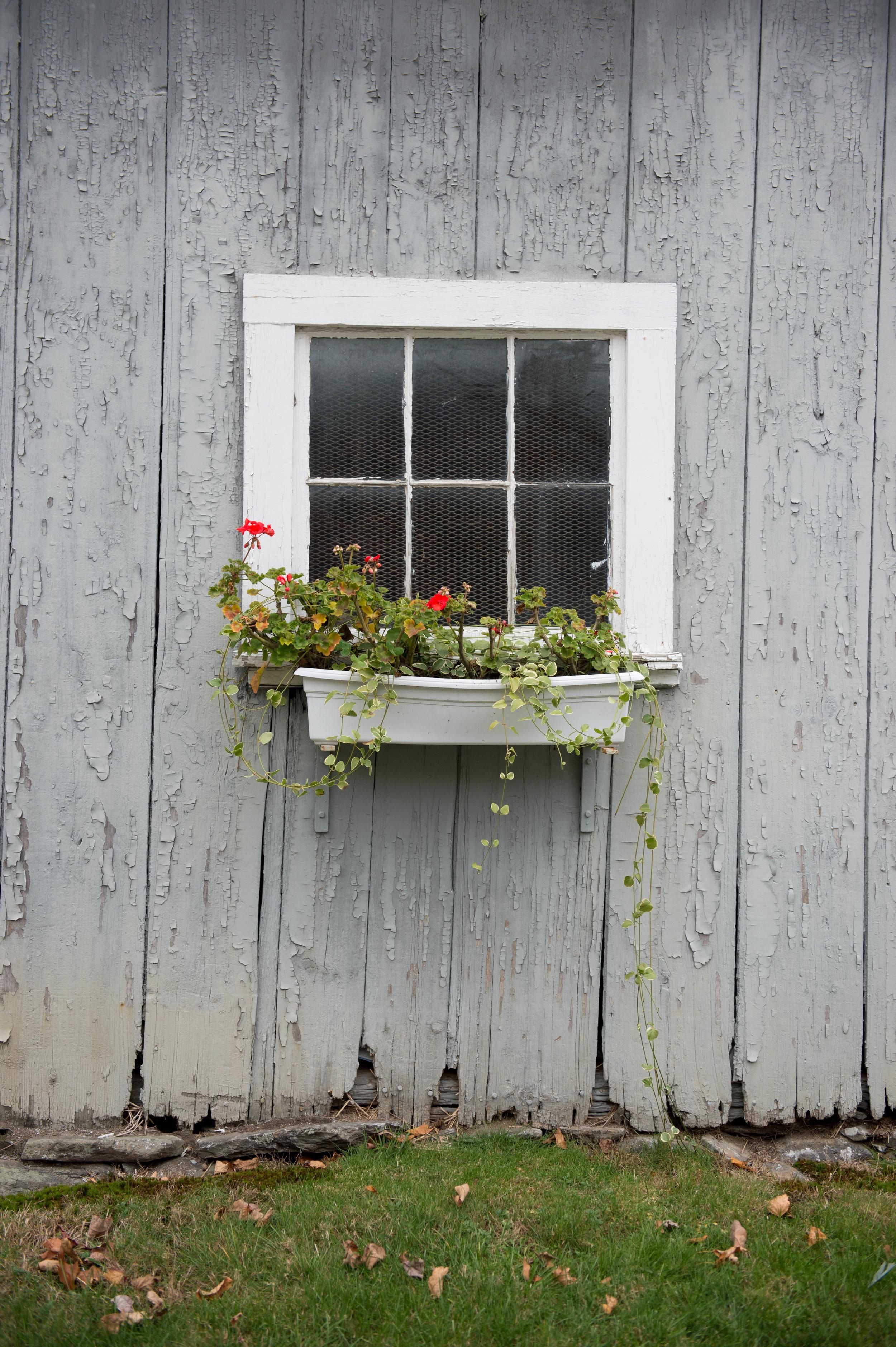 Lilac_Farm_Edible_Boston008.jpg