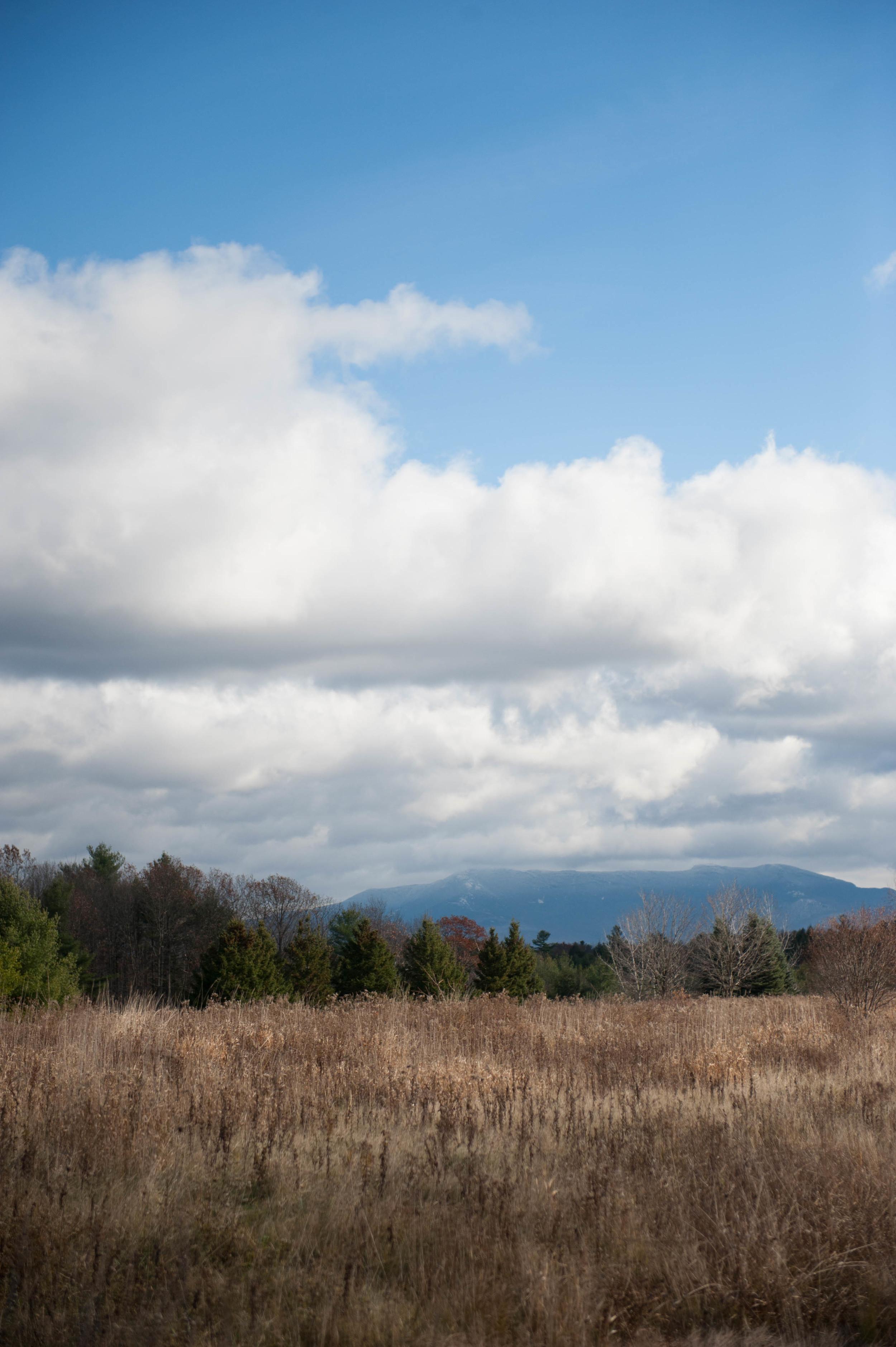 The_Ponds_Vermont_Wedding_Photo-31.jpg