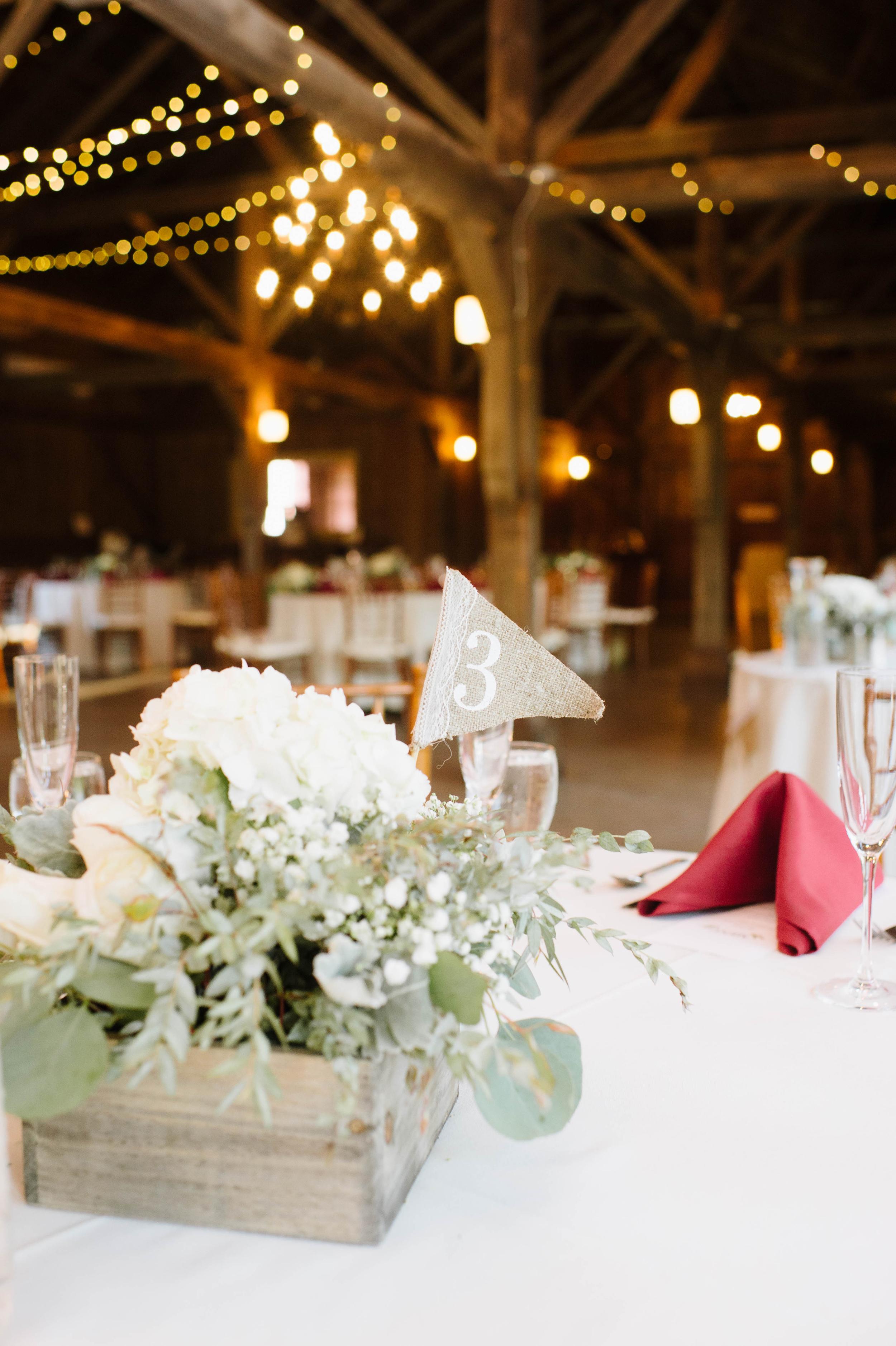 Quonquont-Farm-Wedding025.jpg