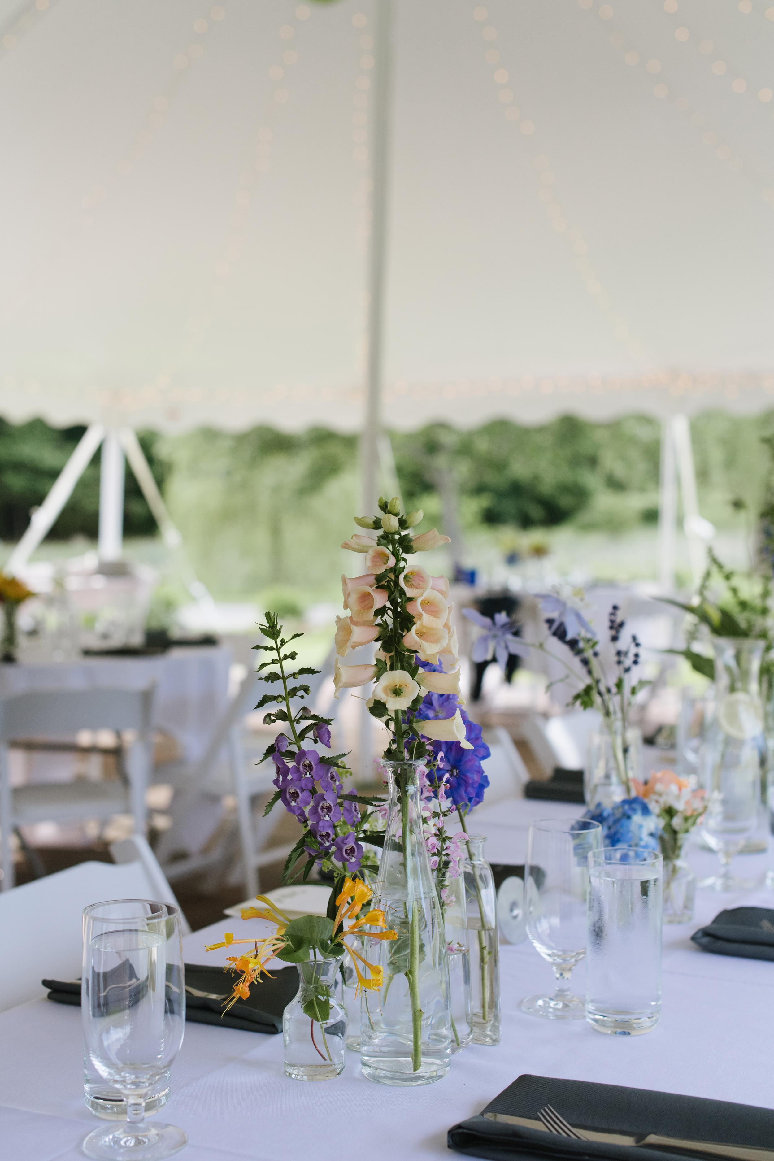 Lincoln-Estate-Wedding008.jpg