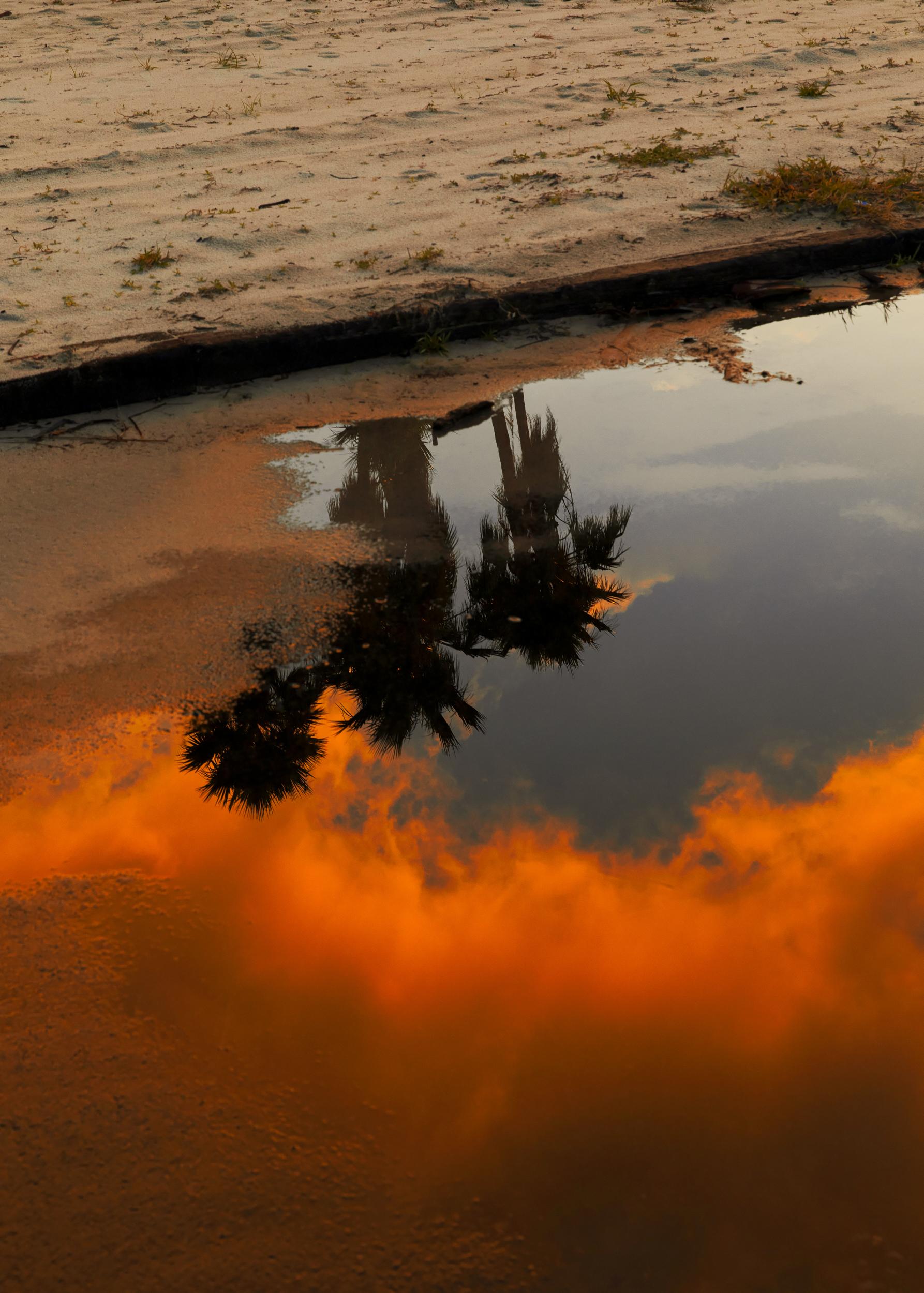 SunriseReflection_10Inches.jpg