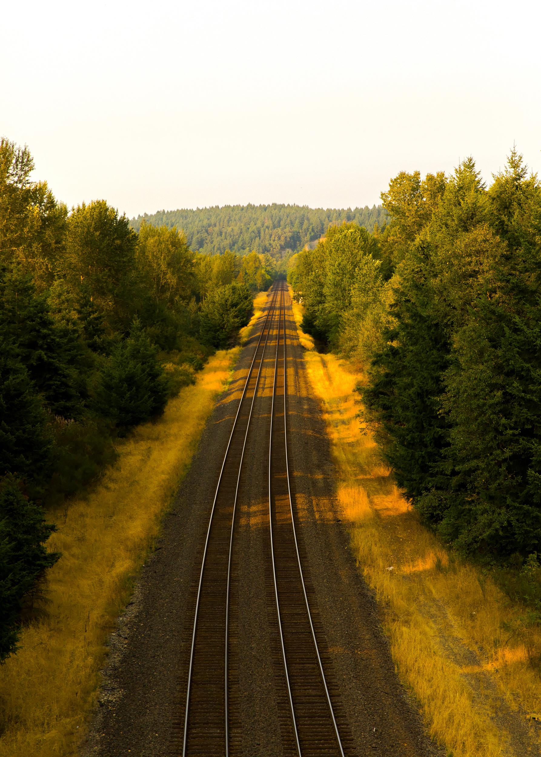 TrainTracks copy_10Inches.jpg