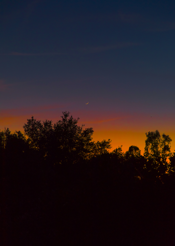 SunsetMoon_10in.jpg