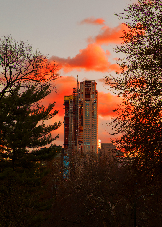 SunsetConstruction_10in.jpg