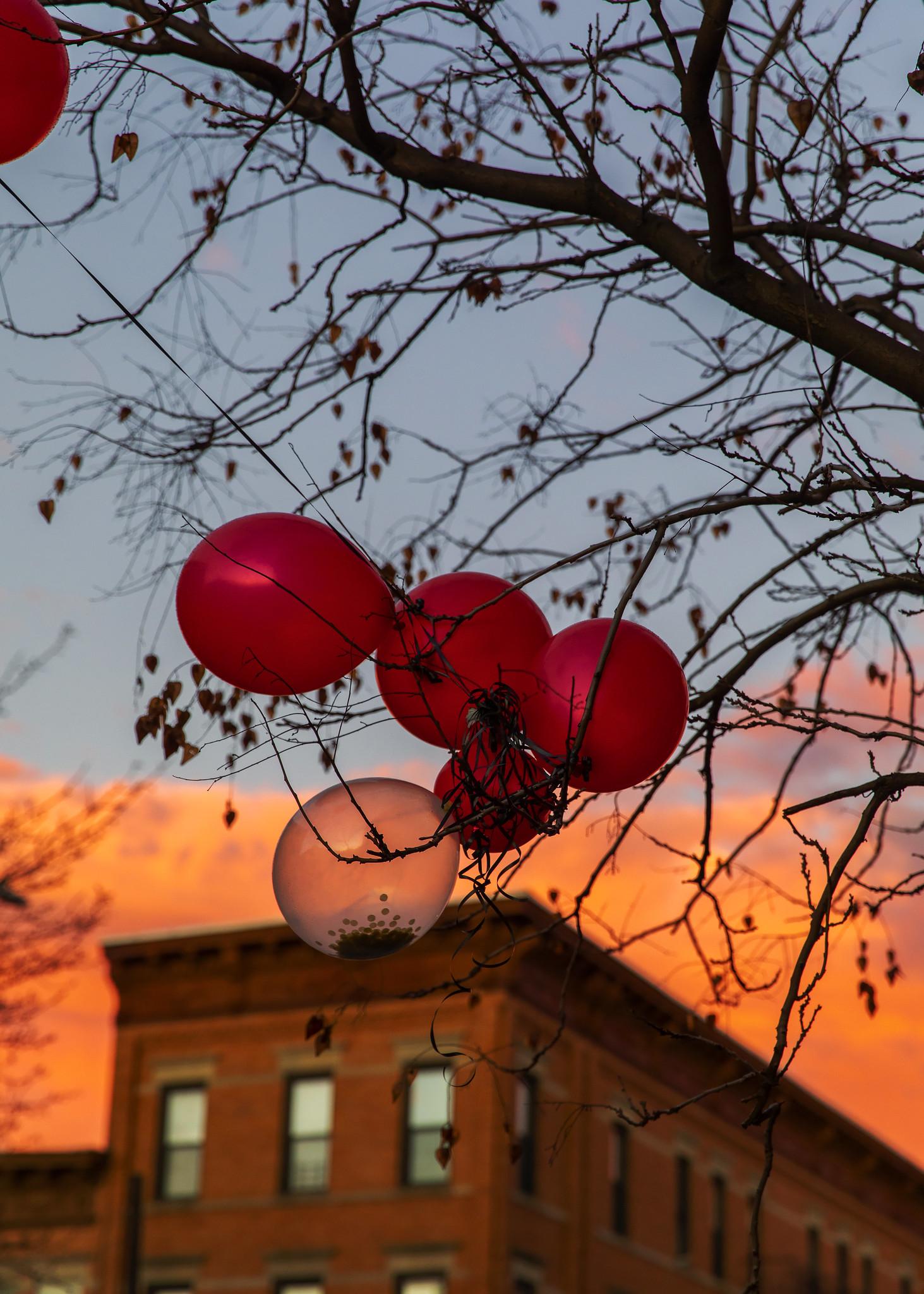 BalloonsSky.jpg