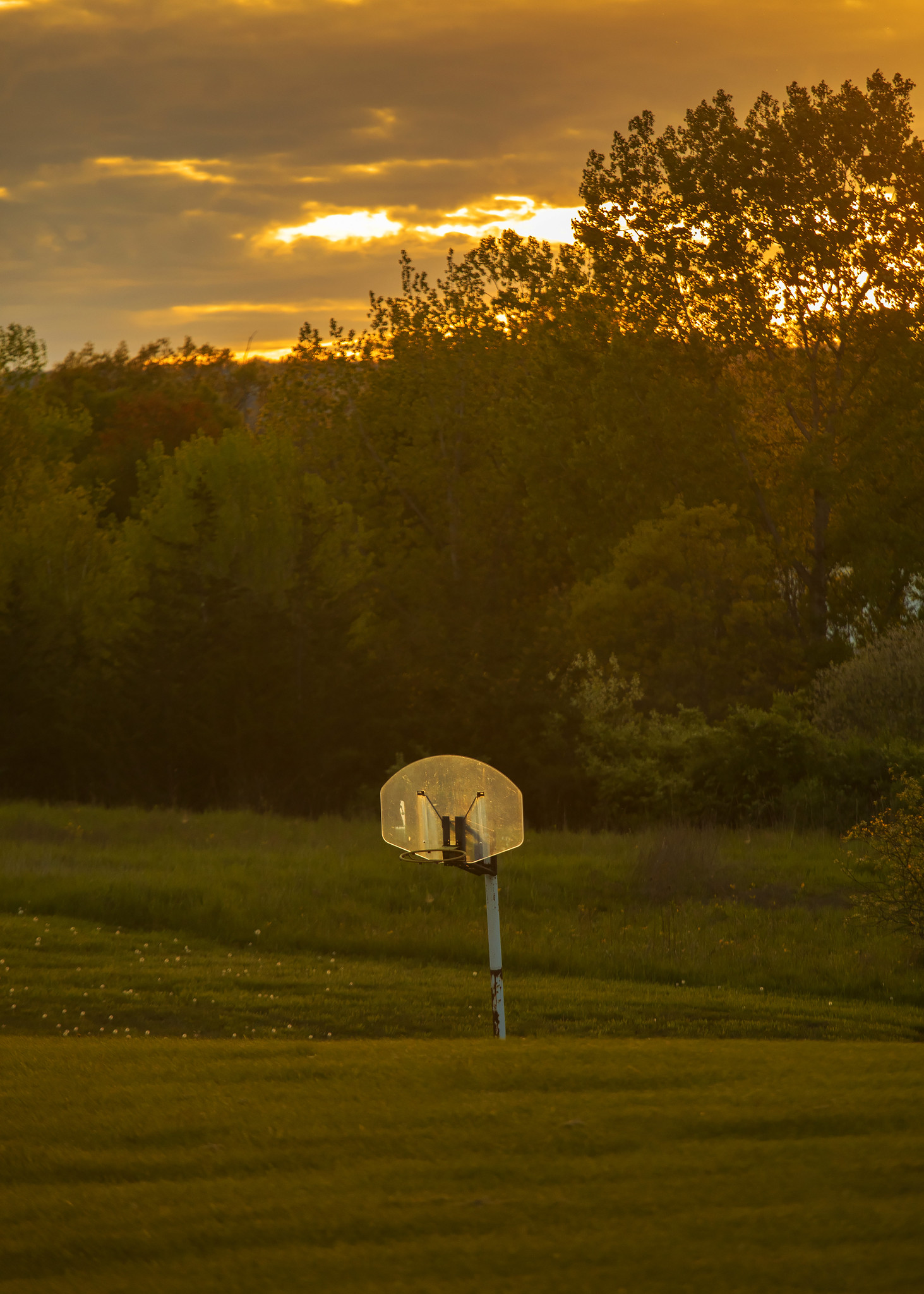 BasketballLight.jpg