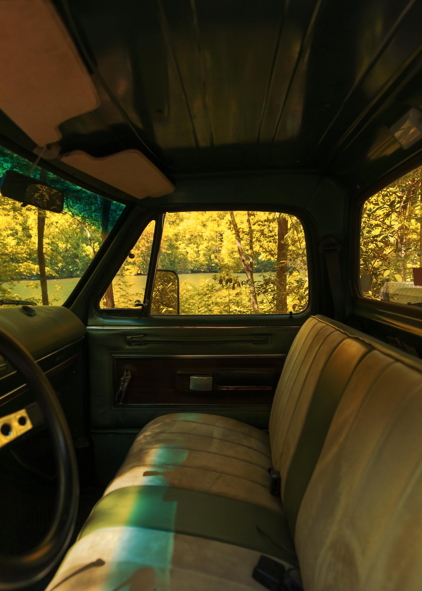 TruckWindowWoods.jpg