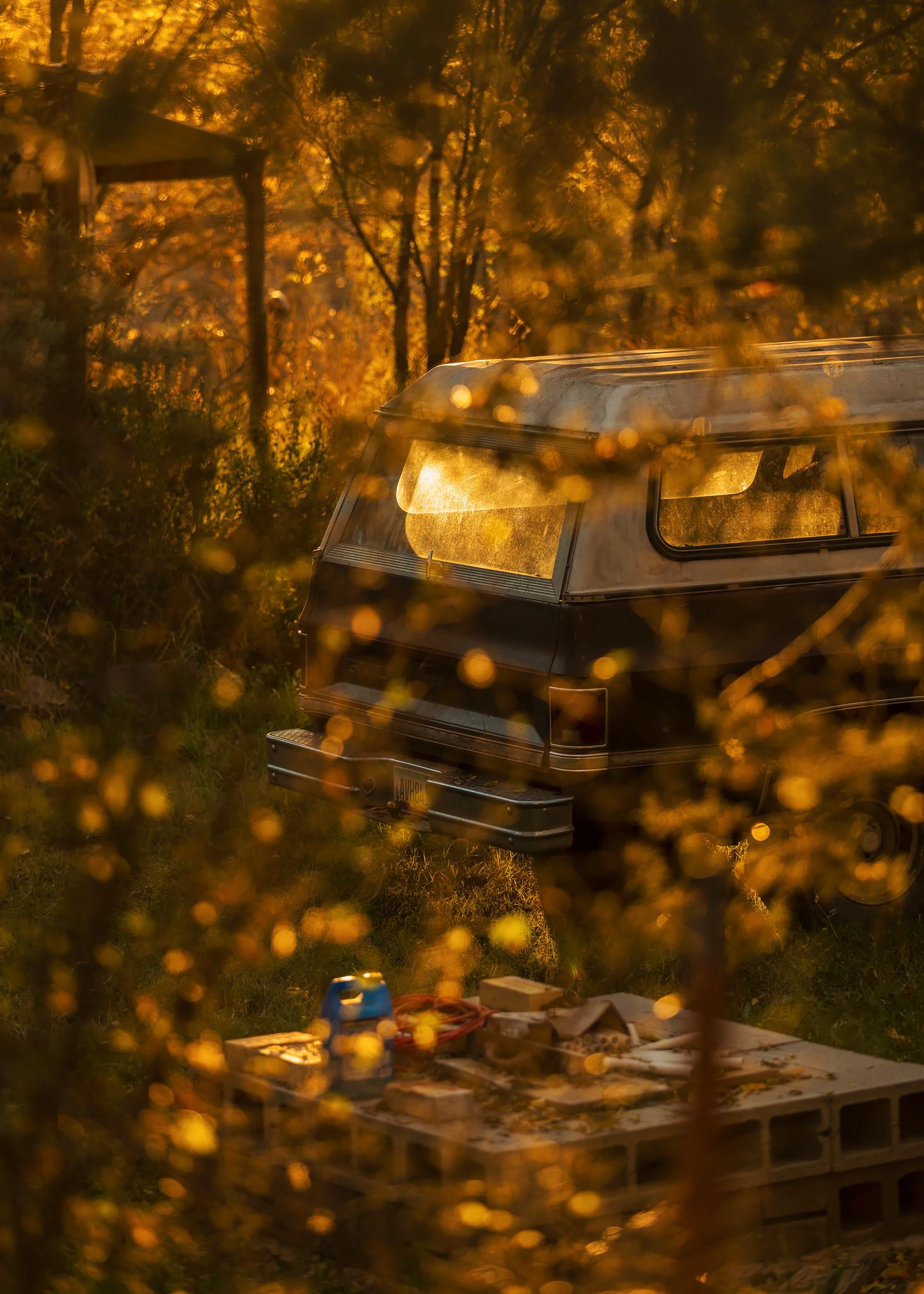TruckLightTrees.jpg