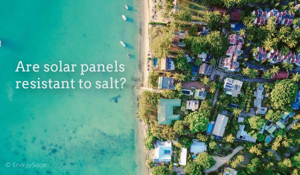 11.28_panels-resistant-salt_blog.png