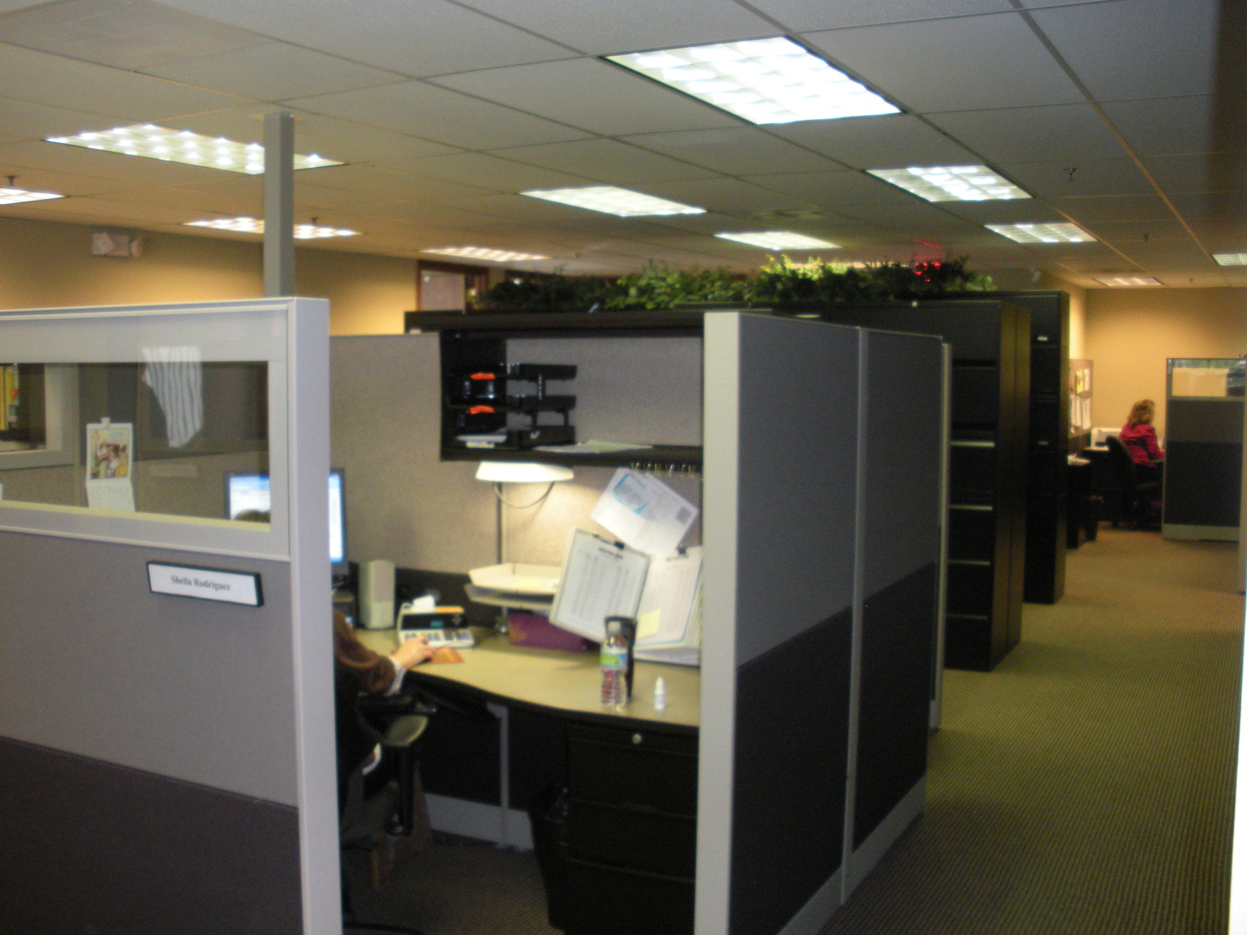Work pictures 009.jpg