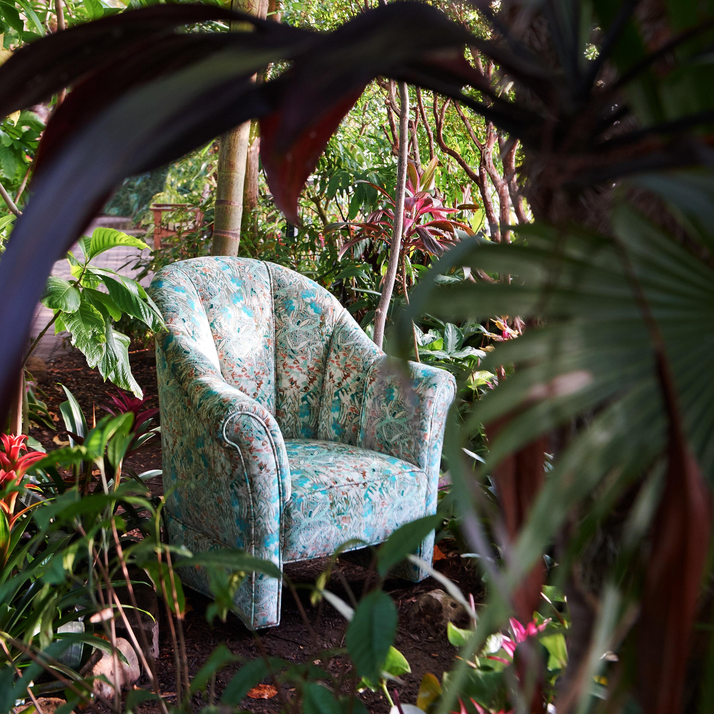 myraid garden2101.jpg