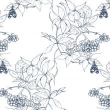 Pratomagno Sambuco Sketch Navy on White.jpg
