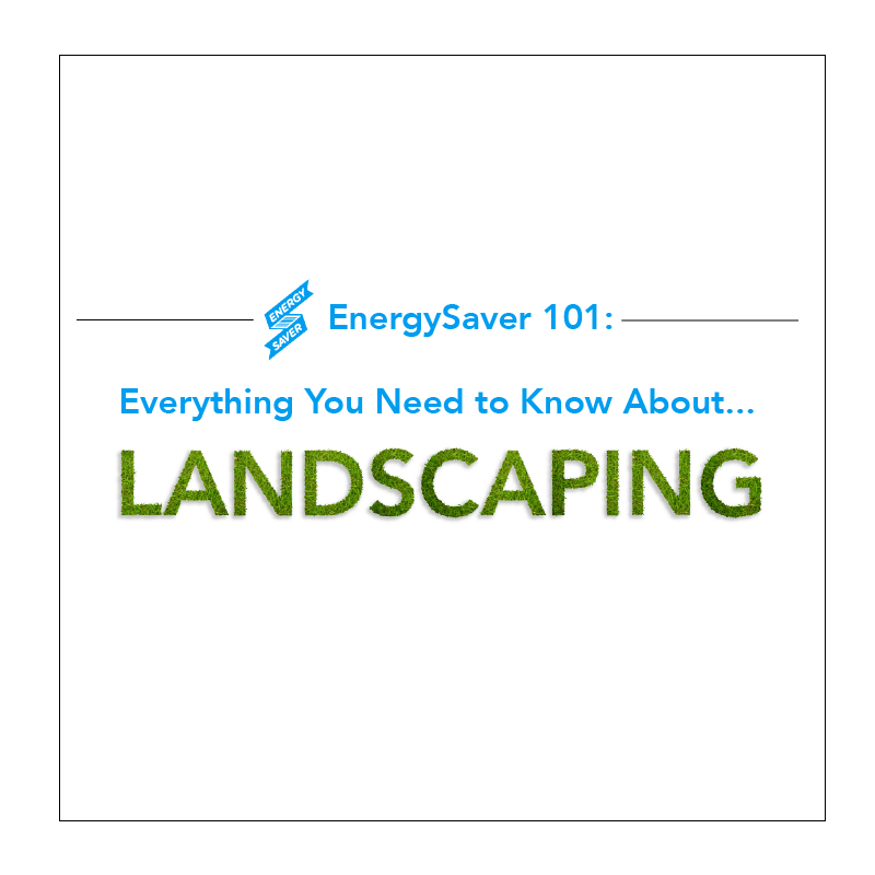 InfographicCovers_Landscaping.png