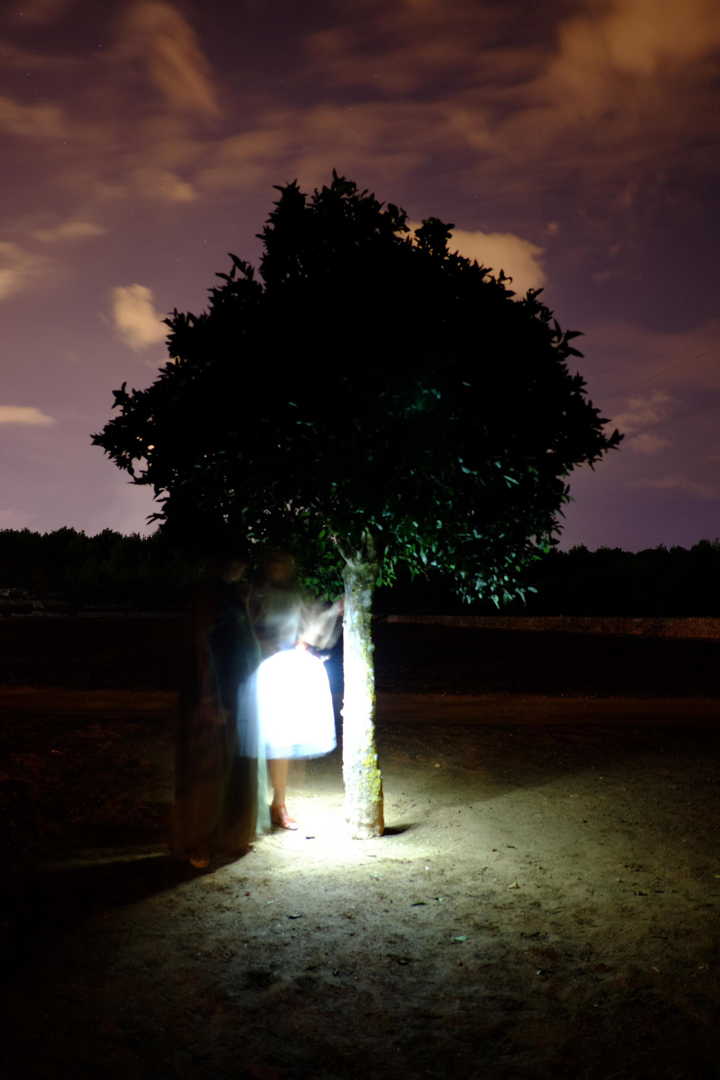In the Orange Tree 2016 Ses Dotze Naus Ibiza, Spain.