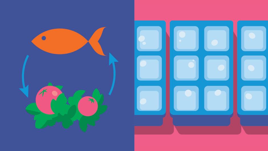 FOOD & WINE: 5 Ways Chefs Wage War Against Waste